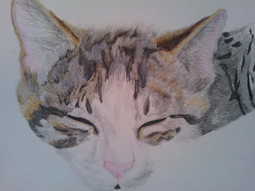 Watercolour Kitten WIP by WolfieSpirit9
