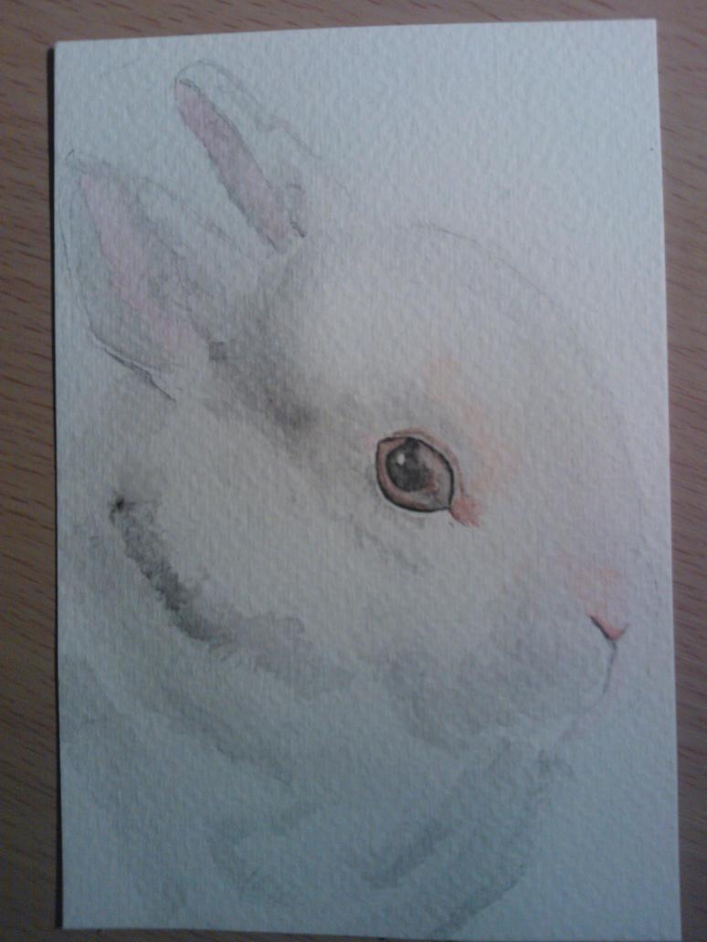 Watercolour Rabbit by WolfieSpirit9