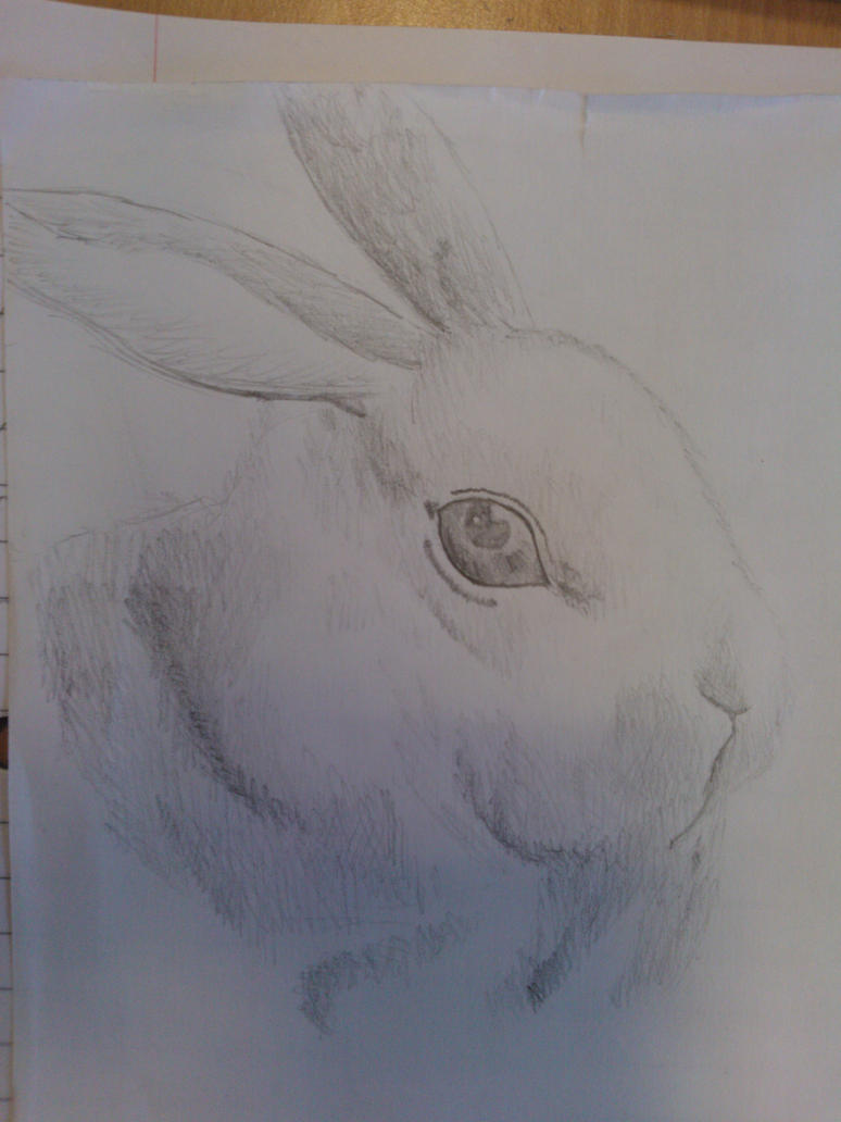 Uni Doodles #5 Rabbit Sketch by WolfieSpirit9