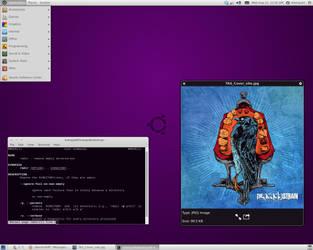 Ubuntu Desktop August by uberdiablo-pixels