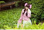 APH_Taiwan
