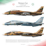 F-14A Tomcat IRIAF -Persian Cat-