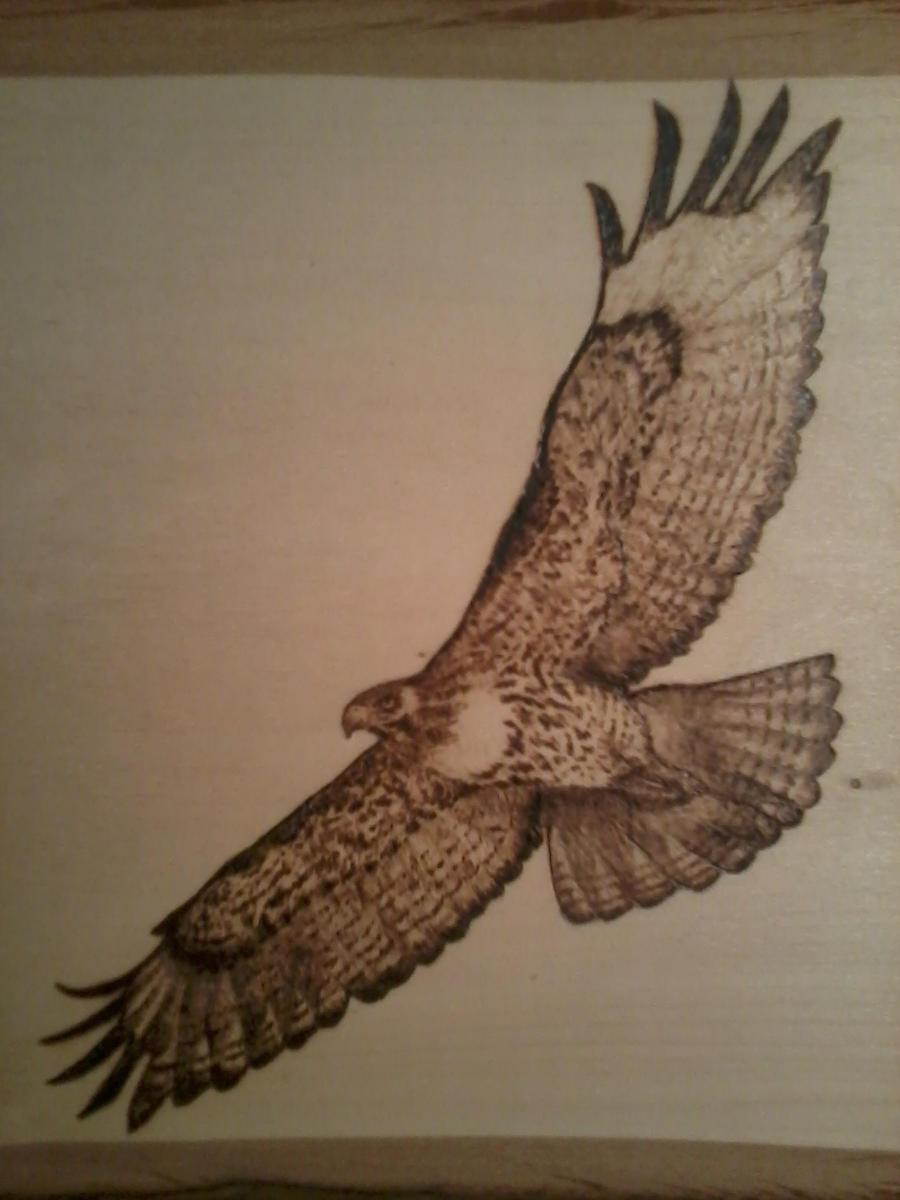 Eagle Wood Burning Patterns