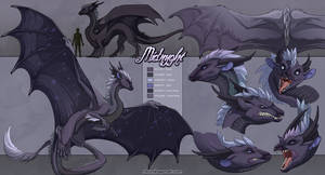 Anya's Midnyght: Reference She by neondragon