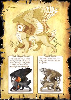 Flight Rising Bestiary: Owlcat