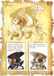 Flight Rising Bestiary: Owlcat