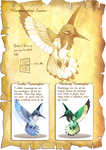 Flight Rising Bestiary: Hummingbird Sprites