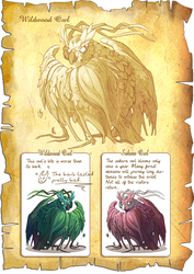 Flight Rising Bestiary: Wildwood Owls