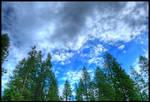 Hahaha. The sky.