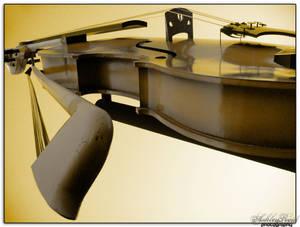 Cape Breton's Giant Fiddle