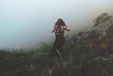 SULDR ET LAMINA by Sylfvr