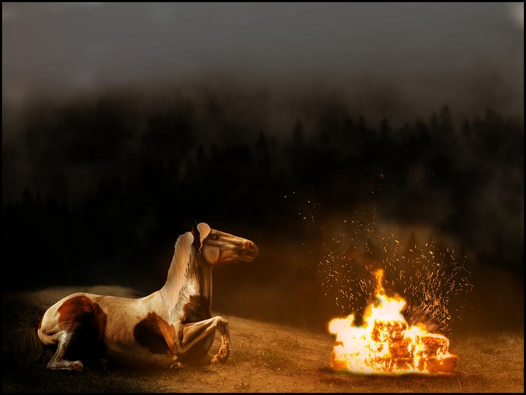 don't burn me. [ commission. ]