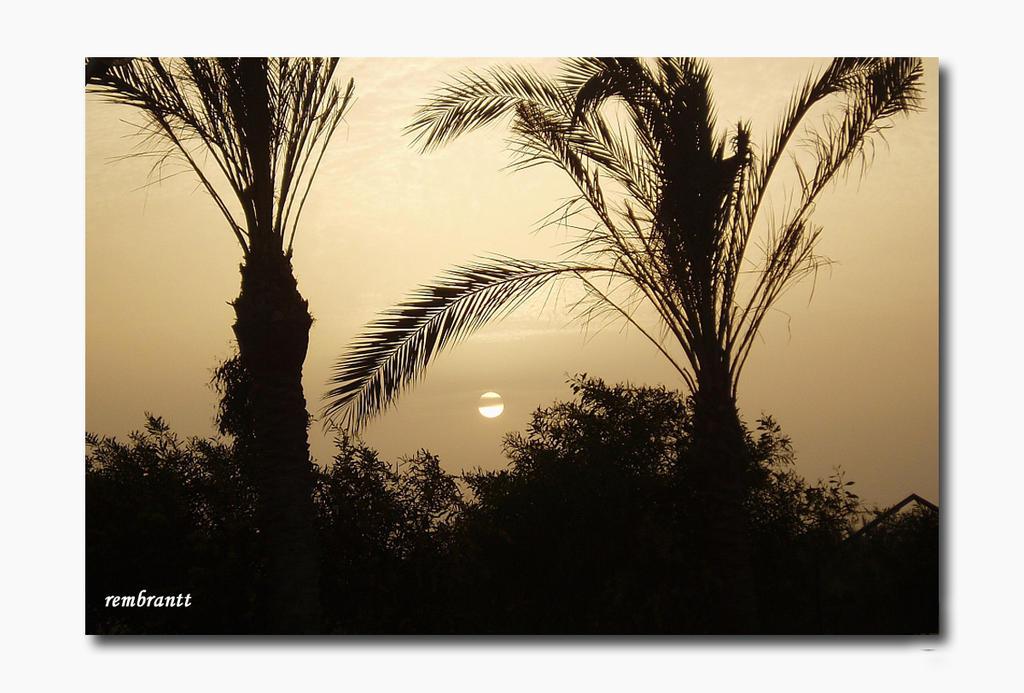 Urlaub in Aegypten 11 by rembrantt