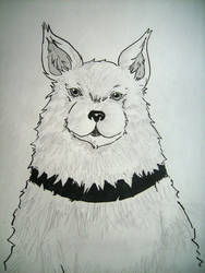 Wolf Dog by bananatree
