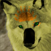 Sol Avatar by Random-Moon-Fox