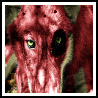 Soren avatar by Random-Moon-Fox