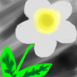 White Flower by Katarina-G