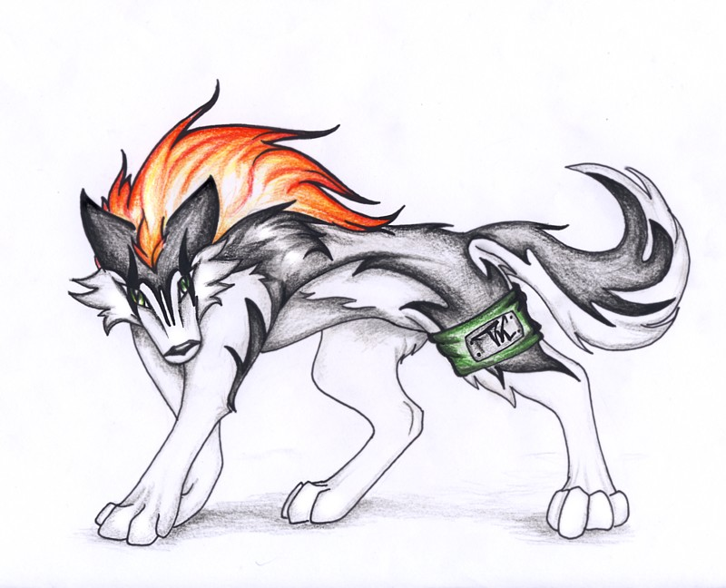Wolf Drawing Anime