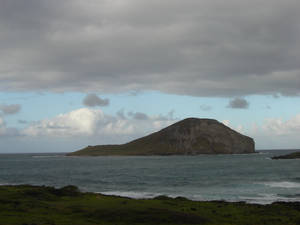 Island of an Island