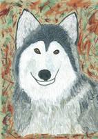 Starr - For Eileen by leopardwolf