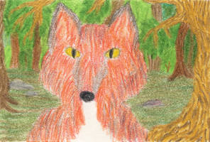 Forest Fox 1 ATC by leopardwolf