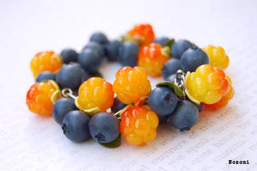 Cloudberry and bilberry