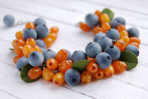 Sea-buckthorn and blueberries by Nozomi21