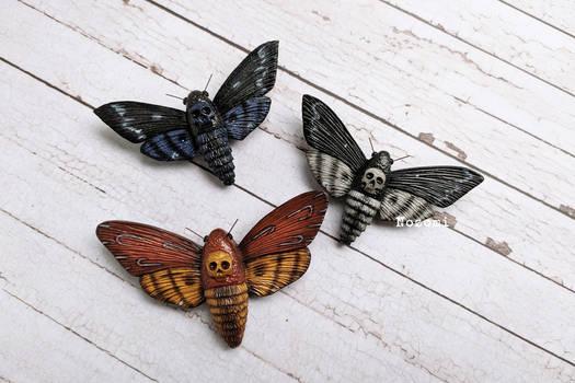 Deadhead moth