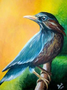 Acrylic on Canvas - The Morning Bird