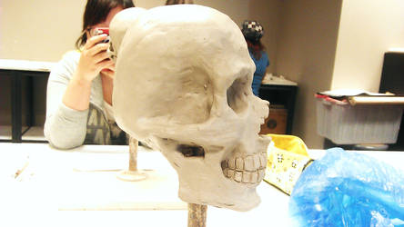 Skull Scuplt angle 2