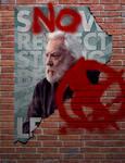 The Hunger Games propaganda poster 3