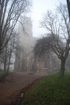 Fog.Stock