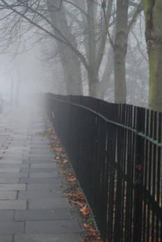 fog.alley.stock