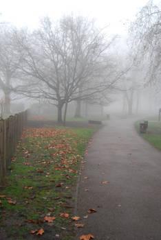 foggy.stock