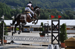 Show Jumping Stock 013