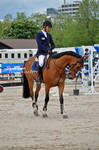 Show Jumping Stock 029