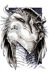 The Hobbit - Smaug Portrait