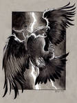 Shadow riding the Thunderbird