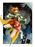 Carrie Kelley Robin and Batman