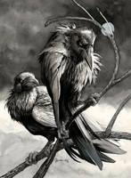 Silvar Ravens by DanielGovar