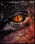 Dark Fire Dragon by Lilyas