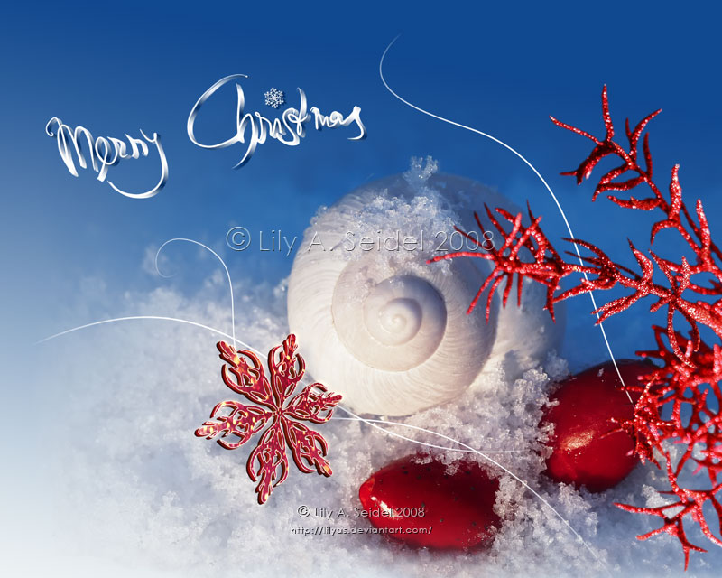 Merry Christmas CARD by Lilyas