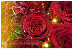Rosy Christmas CARD