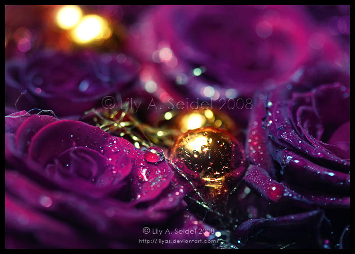 Purple Christmas by Lilyas