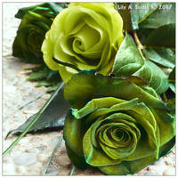 Green Like Hope by Lilyas