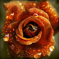 Autumn Rose by Lilyas