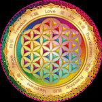 Flower of Life Window Sticker - light -