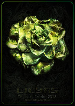 Green Glamour Rose