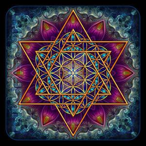 Flower of Life Fractal Star of David