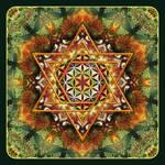 Flower of Life Fractal Mandala Green